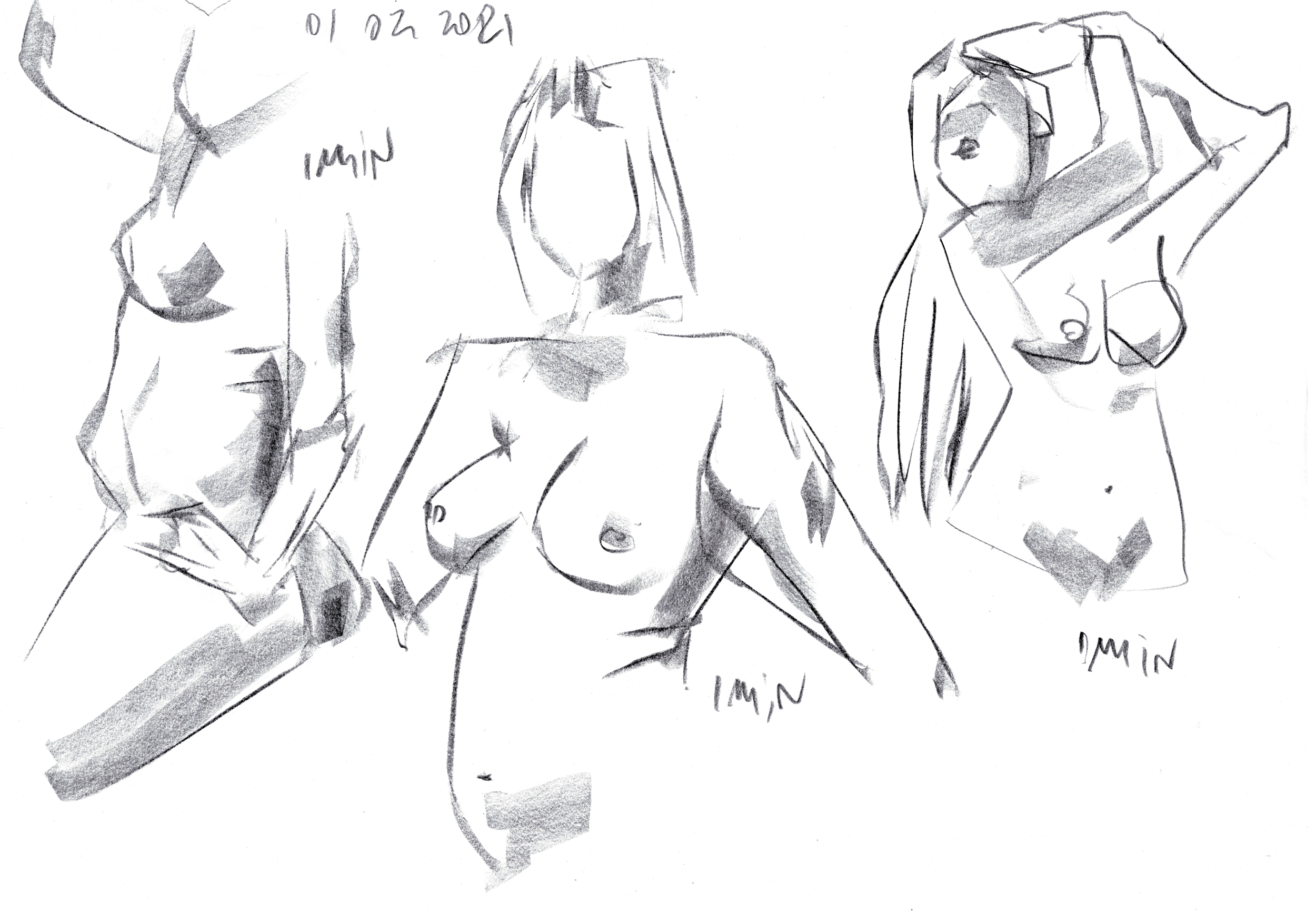 Figure drawing from life model
